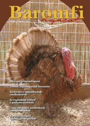 2008 1. szám