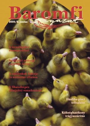 2009 2. szám