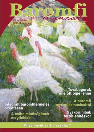 2013/1. szám